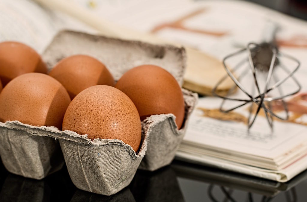 Norco Ranch: Eggs – Things You Most Likely Do Not Know